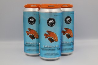 4 pack of canned beer
